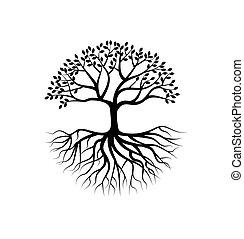 raiz, árvore, silueta