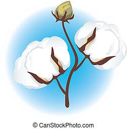 ramo, algodão