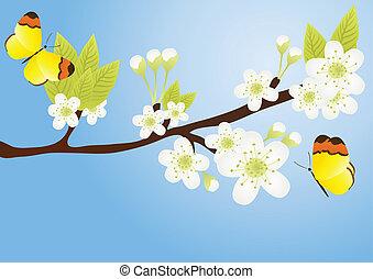 ramo, borboletas