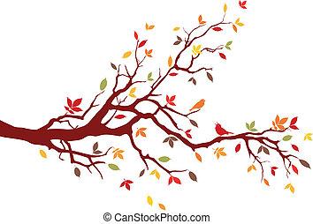 ramo, outono