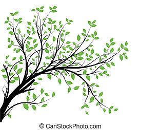 ramo, vetorial, silueta, decorativo