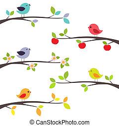 ramos, pássaros