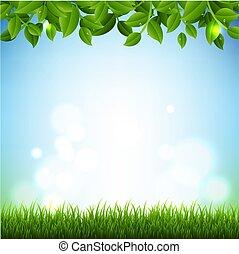 ramos, primavera, bandeira, grama verde