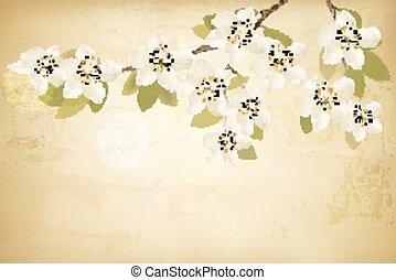 ramos, primavera, experiência., vector., vindima, flores