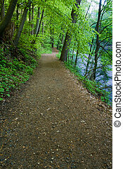 rastro, rio, hiking
