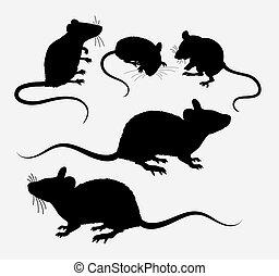 rato, rato, silueta, animal