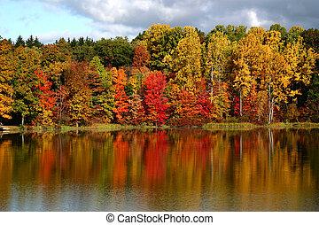 reflexões, outono