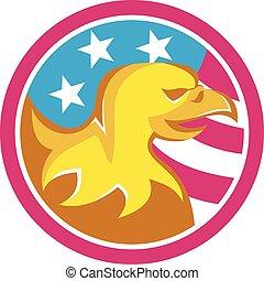 retro, americano, eua, águia, círculo, bandeira, calvo