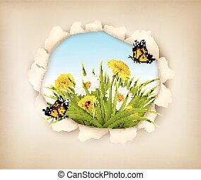 revelar, papel, buraco, experiência., primavera
