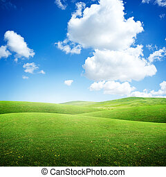 rolando, campos, verde