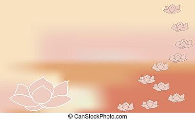 rosa, concha, pétala cor-de-rosa, flor