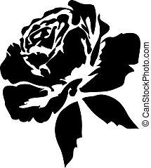 rosas, pretas