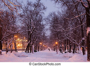 russia., evening., inverno, moscow.