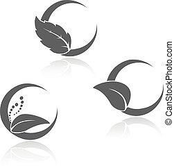 símbolos, folha, vetorial, natural, black-white