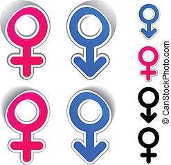 símbolos, vetorial, macho, femininas