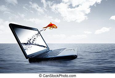 salto, goldfish, monitor, saída