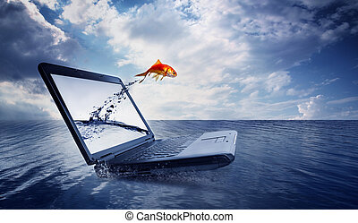 salto, goldfish, saída, monitor, oceânicos