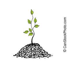sapling, árvore
