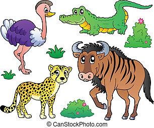savannah, 2, animais, cobrança