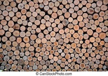 seção, madeira