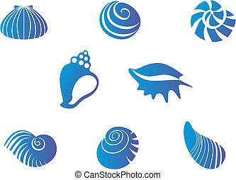 seashells, jogo