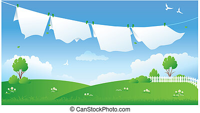 secar, lavanderia, cena