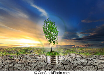 secos, solo, lâmpada, árvore, verde
