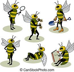 seleção, abelhas, vetorial