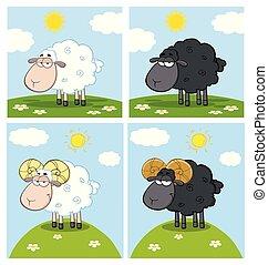 sheep, personagem, caricatura, cobrança, -2