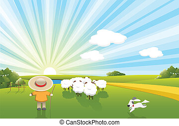 sheeps, cão