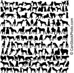 silhuetas, cão, centenas