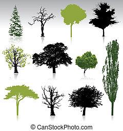 silhuetas, cobrança, árvore