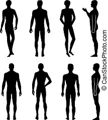 silueta, costas, comprimento, frente, cheio