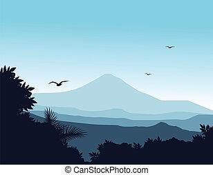 silueta, fundo, natureza
