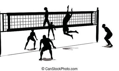 silueta, voleibol