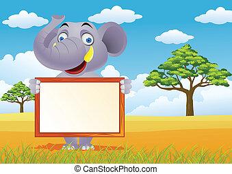 sinal, elefante, em branco