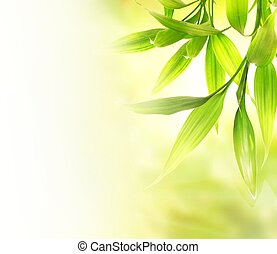 sobre, obscurecido, experiência verde, folhas, bambu, abstratos