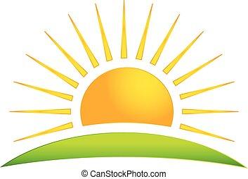 sol, vetorial, colina verde, logotipo, ícone