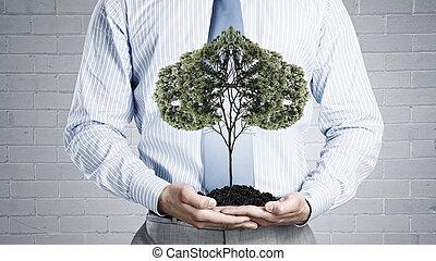 solo, árvore, verde
