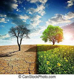 solo, secos, país, rapeseed, árvore., rachado, campo, verde