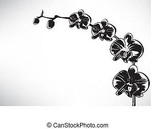 stylized, orquídea