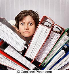 swamped, contabilista, documentos, financeiro