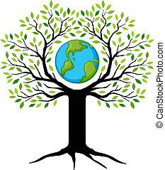 terra, árvore
