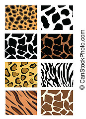 texturas, pele, animal