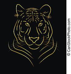 tiger, dourado