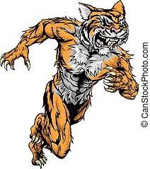 tiger, executando, esportes, mascote
