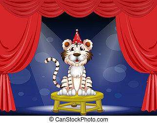 tiger, executar