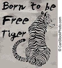 tiger, gráfico, t-shirt, slogans, vetorial, desenho