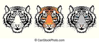 tiger, jogo, heads.