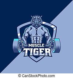 tiger, modelo, mascote, músculo, logotipo